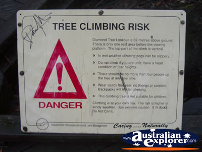 Manjimup Diamond Tree Lookout Sign . . . CLICK TO VIEW ALL MANJIMUP (DIAMOND TREE LOOKOUT) POSTCARDS
