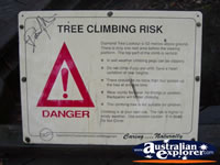 Manjimup Diamond Tree Lookout Sign . . . CLICK TO ENLARGE