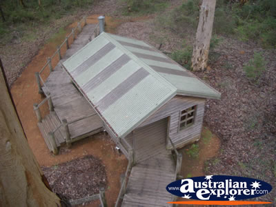 Manjimup Diamond Tree Lookout From Above . . . CLICK TO VIEW ALL MANJIMUP (DIAMOND TREE LOOKOUT) POSTCARDS