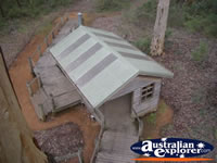 Manjimup Diamond Tree Lookout From Above . . . CLICK TO ENLARGE