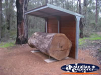 Manjimup King Jarrah Heritage Trail . . . CLICK TO ENLARGE