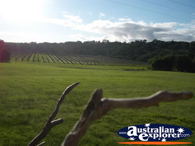 Margaret River - Wine Region.