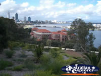 Perth Cbd From Kings Park . . . CLICK TO ENLARGE