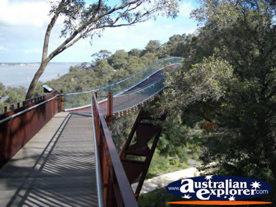 Perth Kings Park Lotterywest Federation Walkway Arched Bridge . . . VIEW ALL PERTH (KINGS PARK) PHOTOGRAPHS