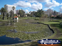 Queens Gardens in Perth . . . CLICK TO ENLARGE
